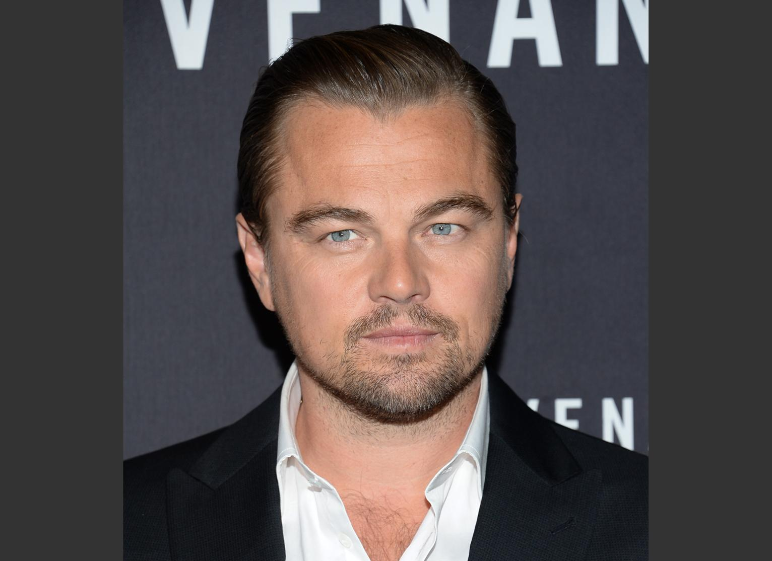 Dicaprio Happy Leaders Taking Climate Change More