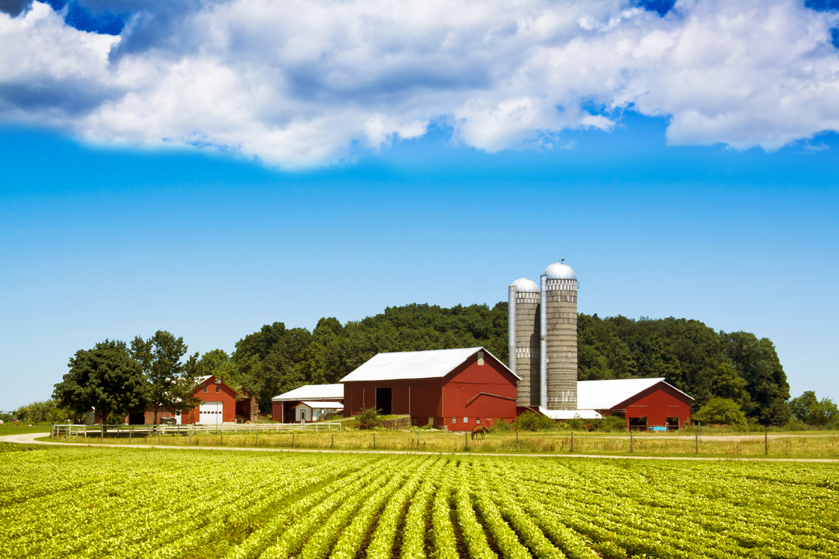 vacation time 4 reasons to try a farm to table trip eat run