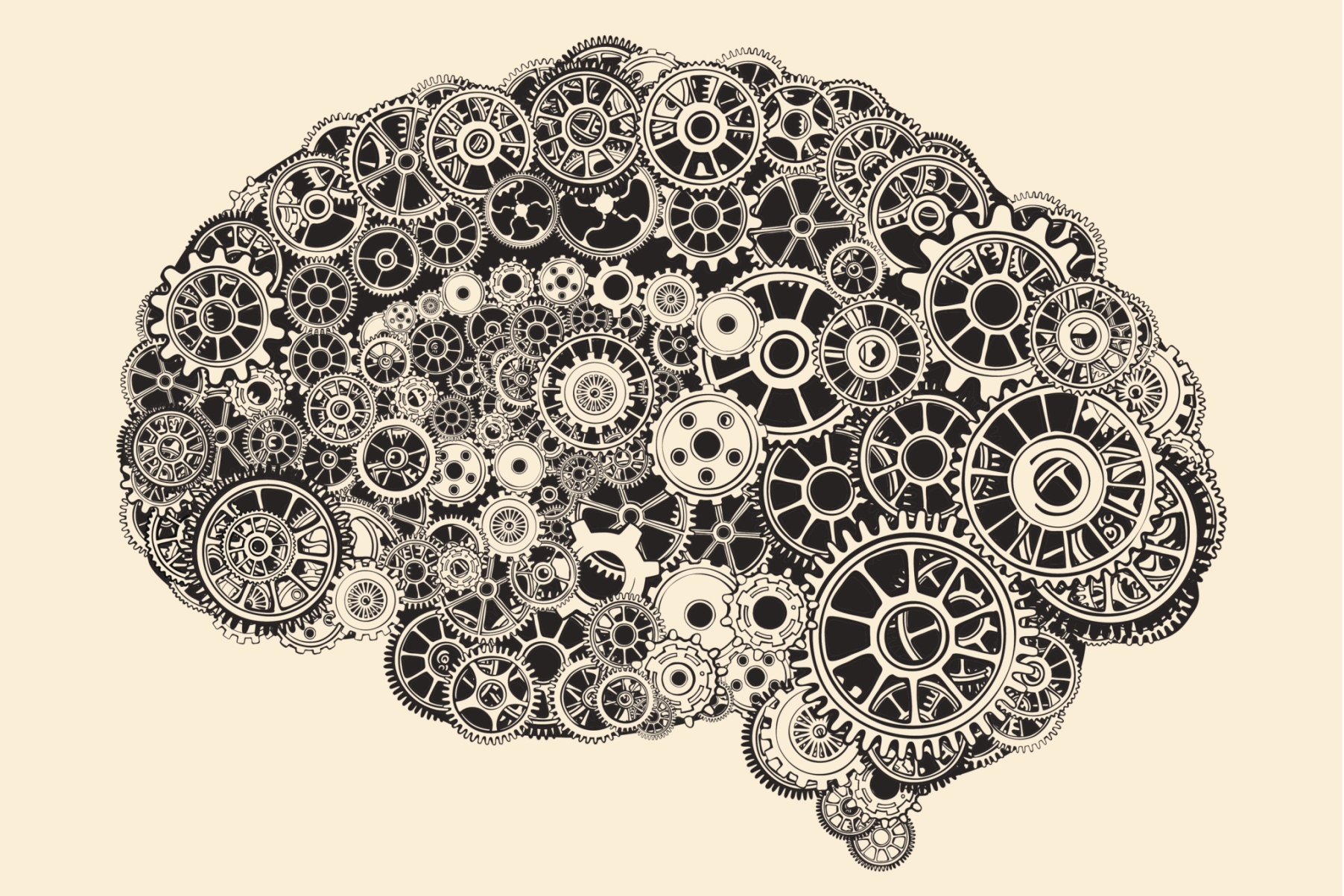 Easy Ways to Protect Your Aging Brain | Wellness | US News