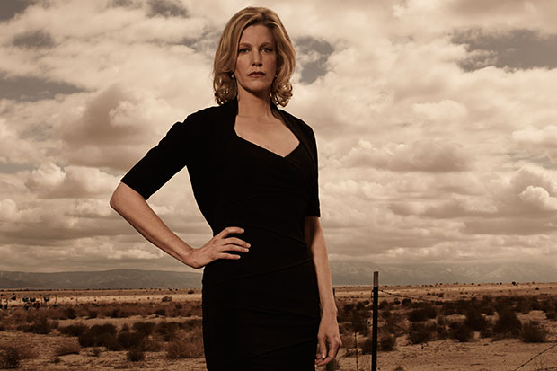 Anna Gunn Talks About Skyler White's Role as 'Breaking Bad ...