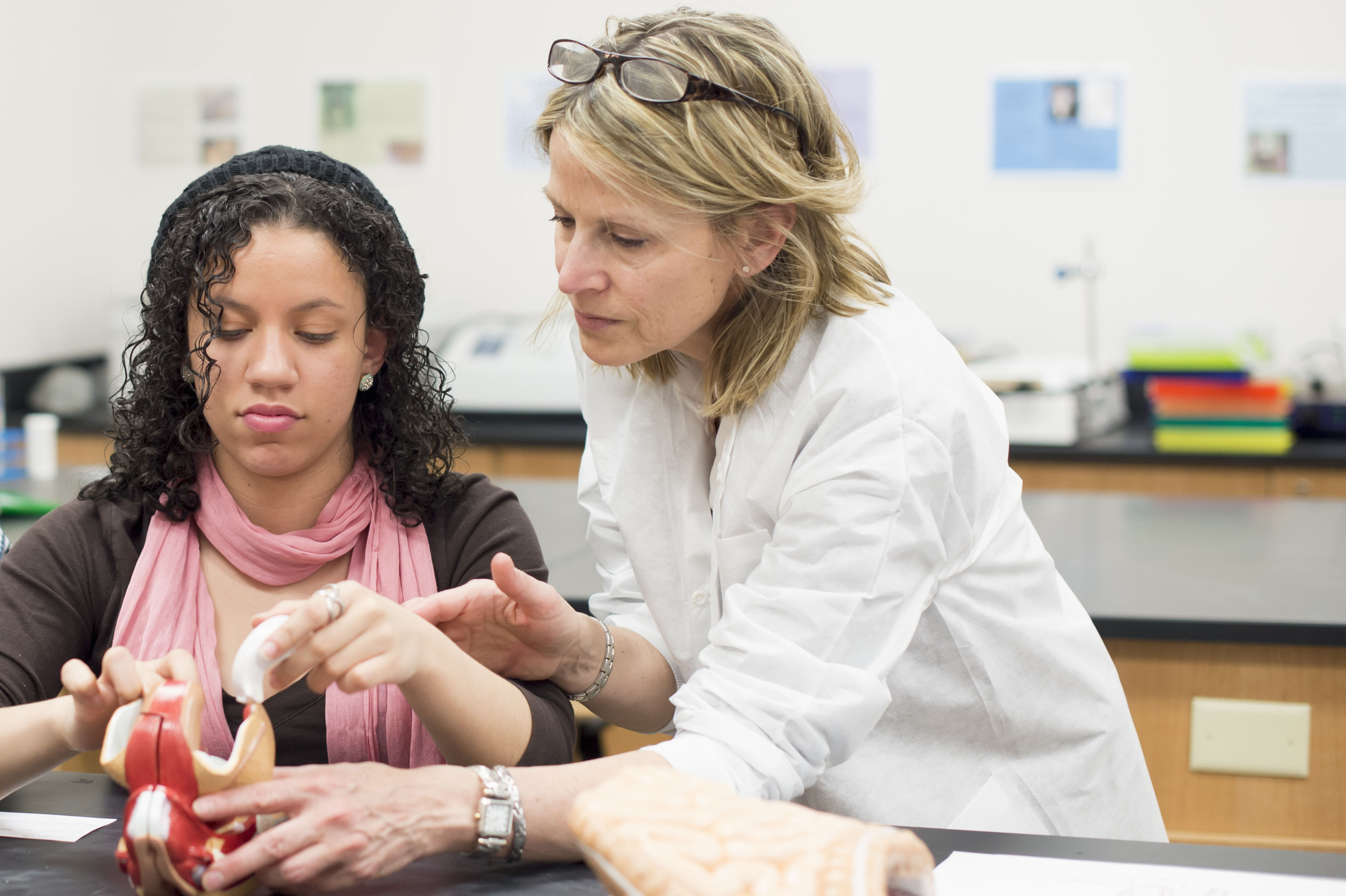 6 questions to ask your premed adviser medical school admissions 6 questions to ask your premed adviser medical school admissions doctor us news