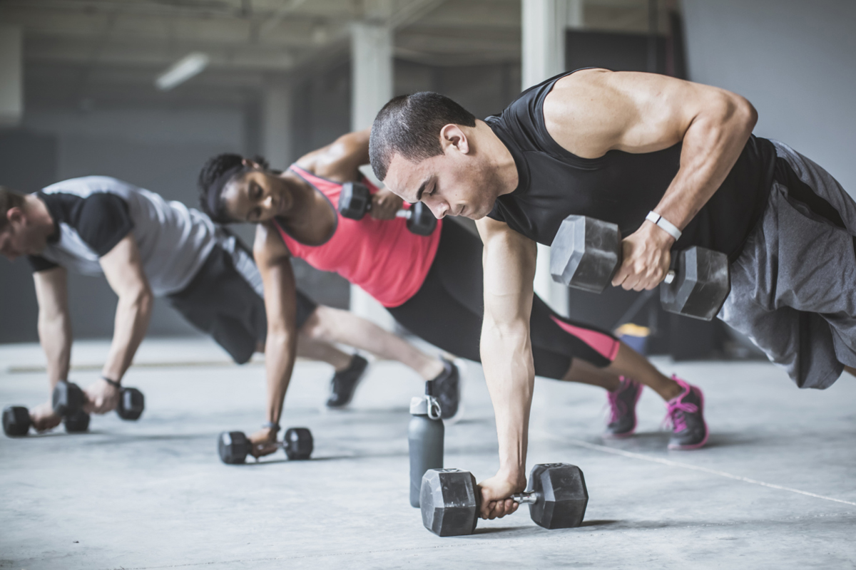 Premise Indicator Words: What's The Best Exercise For Building Muscle?