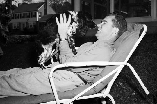 Senior Dog Food >> The 1952 Checkers Speech: The Dog Carries the Day for ...