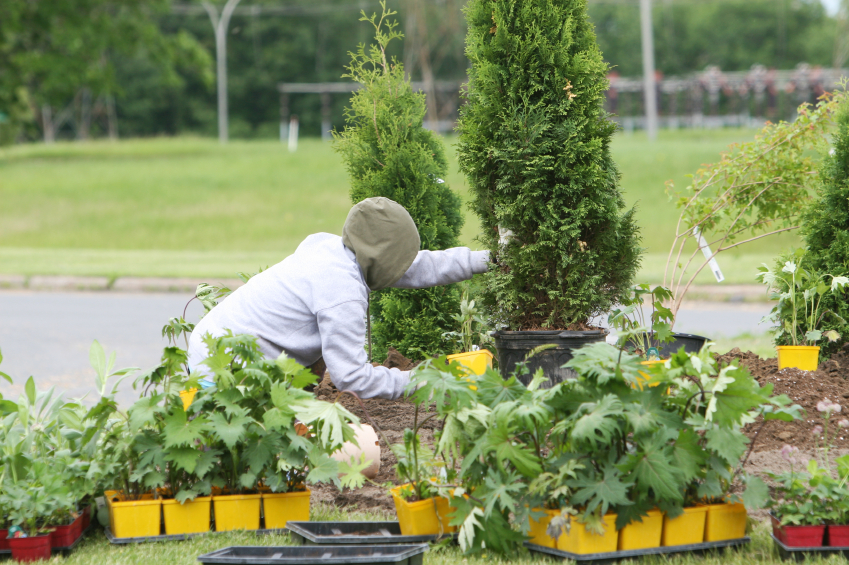 Horticulture what are the college majors